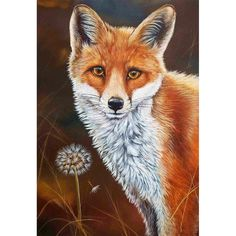 Diamond Painting - Full Round - Fox – Everydayedeals Diamond Drawing, 5d Diamond Painting, Fox Painting, Painting Frames, Simple Acrylic Paintings, Acrylic Painting Canvas, Baby Room Paintings, Cow Art, Amazon Art