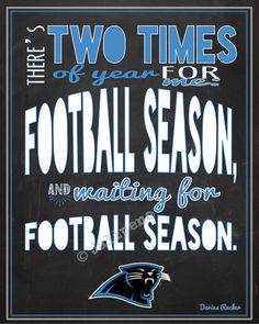 Carolina Panthers Football Season Kickoff Darius Rucker Quote