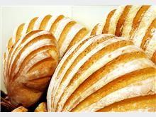 oyster loaf