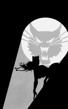 Cool Go Catwoman!