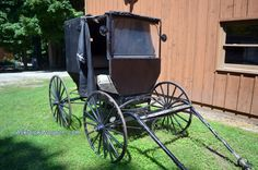 Amish buggy - on the farm