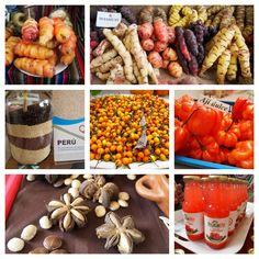 Mistura, Peru´s food fair.  Mashuas, quinoa, ají charapita, ají dulce, sacha inchi, camu camu juice. Super foods from Peru.