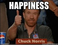 chuck norris on happiness