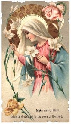 Mary most Gentle pray for us.