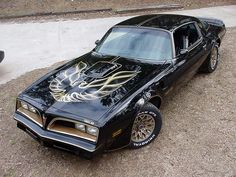 "1978 Special Edition ""Bandit"" Trans Am"