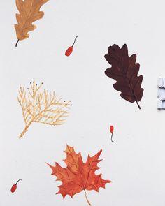 Illustration by Toma Kurkova • #goauche #autumn #sketch»