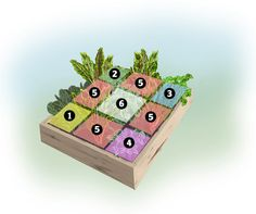 """Attractive and productive! """"Vegetables for the Shade"""", a 4x4-foot Garden Design Plan from Shawna Coronado."""