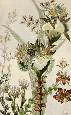 TROWBRIDGE - Japanese Fantasy Flowers - These colourful Art Deco floral images are fine art giclee reproductions of original designs used to produce hand-painted wallpaper and are from the TROWBRIDGE antique archives. in Silver Leaf Mirror (Frame Code: Japanese Flowers, Japanese Art, Painting Prints, Painting & Drawing, Art Chinois, Hand Painted Wallpaper, Art Japonais, Flower Wallpaper, Wallpaper Art