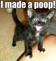 90 #funny images of the day