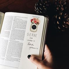 Serve one another in love. Galatians 5:13 #biblejournaling