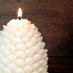 Pine Cone Candle-The Perfect Gift