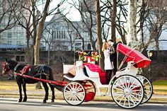 newly married couple with horse and carriage in Central Park, New York