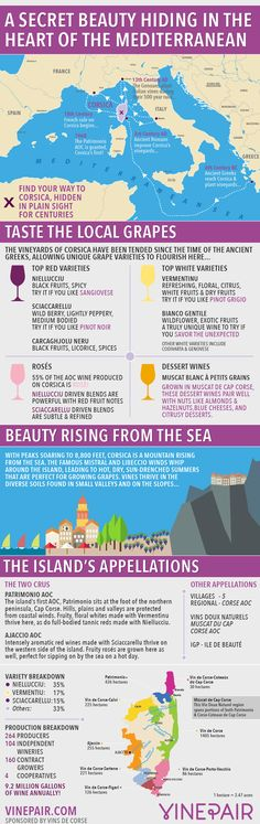 An Introduction, Map And Guide To The Wines Of Corsica