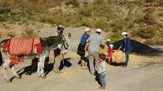 """III Olimpiada rural de Güéjar Sierra. Cortesía de """"El arriero"""" Sierra Nevada, Cortijo Fuente de los Berros - Güéjar Sierra, Granada (España). elarriero.es"""