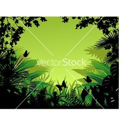 Tropical forest background vector on VectorStock®