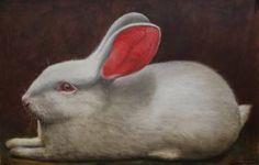 Tom's Rabbit