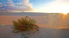 Fuerteventura - uma das maiores Ilhas Canárias