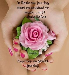 ń Rosie om jou dag mooi en spesiaal te maak. Morning Blessings, Good Morning Wishes, Day Wishes, Lekker Dag, Good Morning Image Quotes, Evening Greetings, Afrikaanse Quotes, Goeie More, Morning Greetings Quotes