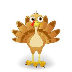 42 Best Baby Turkey Images
