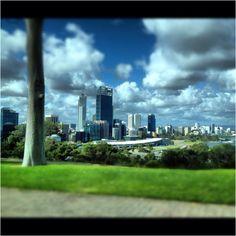 Perth Australia from Kings Park