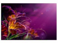 Tableau moderne Fleurs Abstraites