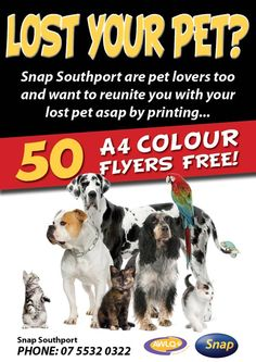 Lost Your Pet ?  Snap Southport are pet lovers too and want to reunite you with your lost pet asap...