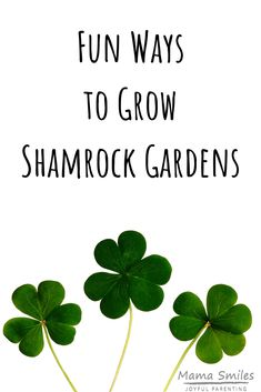Get into the spirit of spring and St. Patrick's Day! Show off your green thumb with these fun ways to grow shamrock gardens. St Patrick Day Activities, Activities For Boys, Indoor Activities, Party Activities, Holiday Activities, Preschool Activities, Hands On Learning, Fun Learning, Family Garden