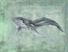 """Introducing artist Anthony Morrow's Humpback Whale coastal art.  This large 20""""…"""