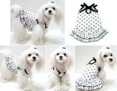10 Ideas para Hacer Vestidos a Nuestras Mascotas