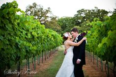 Private Events | Lost Oak Winery
