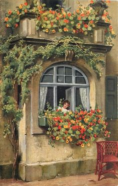 nasturtions in window box below girl looking out of window