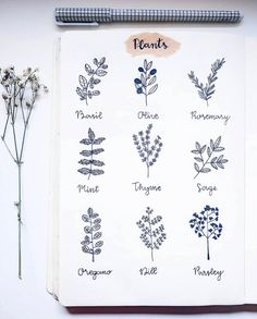 How to draw plants? Follow ig@kawariisjournal for more bullet journaling inspiration.