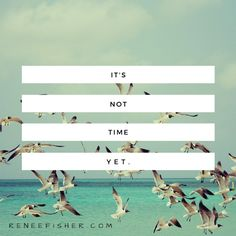 NEW POST: It's Not Time Yet... http://reneefisher.com/its-not-time-yet/