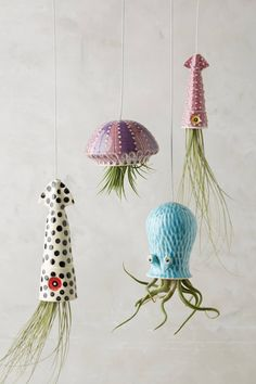 succulents What's better than a hanging succulent planter? A sea creature hanging succulent planter Hanging Succulents, Hanging Planters, Outdoor Planters, Succulent Planters, Succulents Garden, Cactus Plants, Ceramic Planters, Garden Planters, Potted Plants