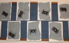 Pavoučí sítě