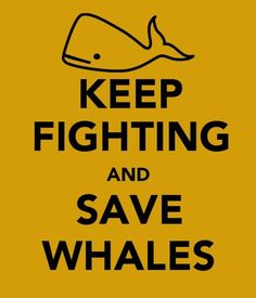 save whales