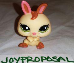 Littlest Pet Shop #1596 Bunny Rabbit Baby Dwarf Cream LPS Brown Green Eyes Toy…