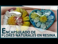 ENCAPSULADO DE FLORES NATURALES EN RESINA UV. Charms o colgantes de flor...