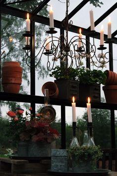 Garden Inspiration, Interior Inspiration, Garden Ideas, Backyard Ideas, Dream Garden, Home And Garden, Small Tiny House, Tiny Houses, Witchy Garden