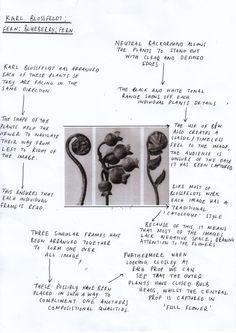 Sample artist analysis - week 1 Assessment, Filmmaking, How To Plan, Videos, Artist, Photography, Image, Cinema, Photograph