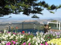 Take in the amazing view over the Lockyer Valley from Toowoomba's Picnic Point
