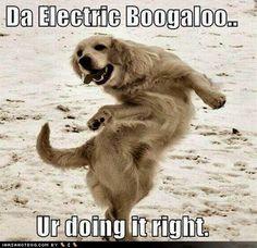 Electric Boogaloo!
