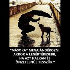 """""""We can judge the heart of a person by his treatment of animal"""" -Immanuel Kant Dog Quotes, Animal Quotes, Life Quotes, Ill Stand By You, Good Day Song, Dog Teeth, Mans Best Friend, I Love Dogs, Big Dogs"""