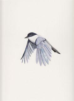 Chickadee Bird - 9 x 12 - Original Watercolor.