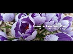 Rosangela C Taylor presents: Living in High Vibration