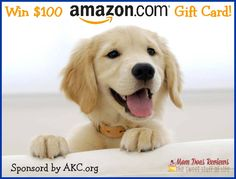 $100 Amazon Gift Card Giveaway Sponsored by AKC