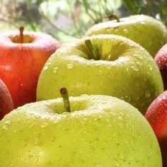 """La meilleure façon de nettoyer vos pommes (d'après la science) """"15 minutes dans du bicarbonate de sodium (une solution d'eau comprenant 10mg/mL de bicarbonate de sodium (NaHCO3)). Au bout de 2 minutes le bicarbonate de sodium avait éliminé plus de #pesticides que les deux autres méthodes le Clorox étant la moins efficace. Au bout de quinze il n'y avait plus de résidus en surface dethiabendazole ni de phosmet..."""" http://ift.tt/2F4dOGm"""