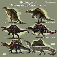 Spinosaurus Aegyptiacus, All Godzilla Monsters, Dinosaur Illustration, Jurassic World Dinosaurs, Creature Concept Art, Dinosaur Art, Prehistoric Creatures, Zoology, Perception