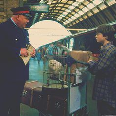 """""""Think your being funny do you""""-the train person Harry's talking to in the picture"""