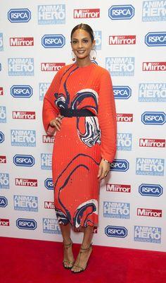 Alesha Dixon Print Dress - Alesha Dixon made a vibrant choice with this red-orange swirl-print dress for the Animal Hero Awards.